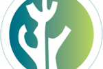 Logo premios Esteve